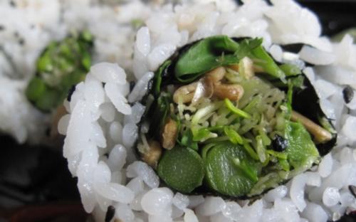 sushi tree green