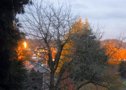 morning portland