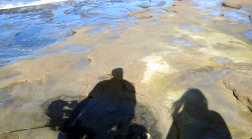 ob tide pool