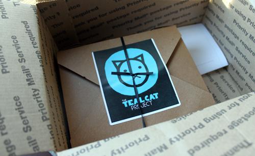 teal cat ocd box