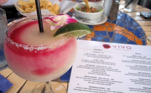 vivo prickly pear margarita